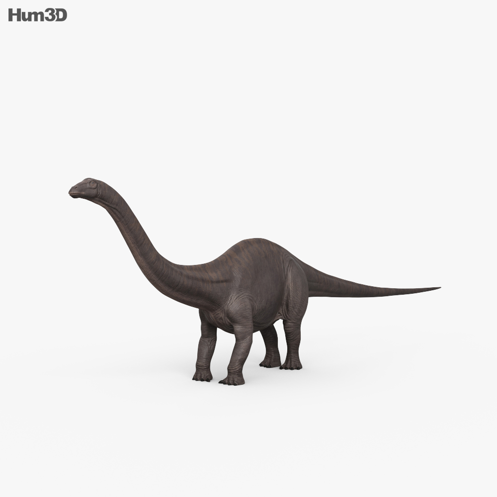 Brontosaurus HD 3d model