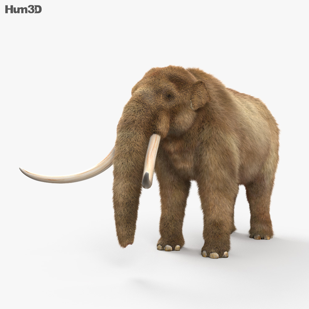 Mastodon HD 3d model