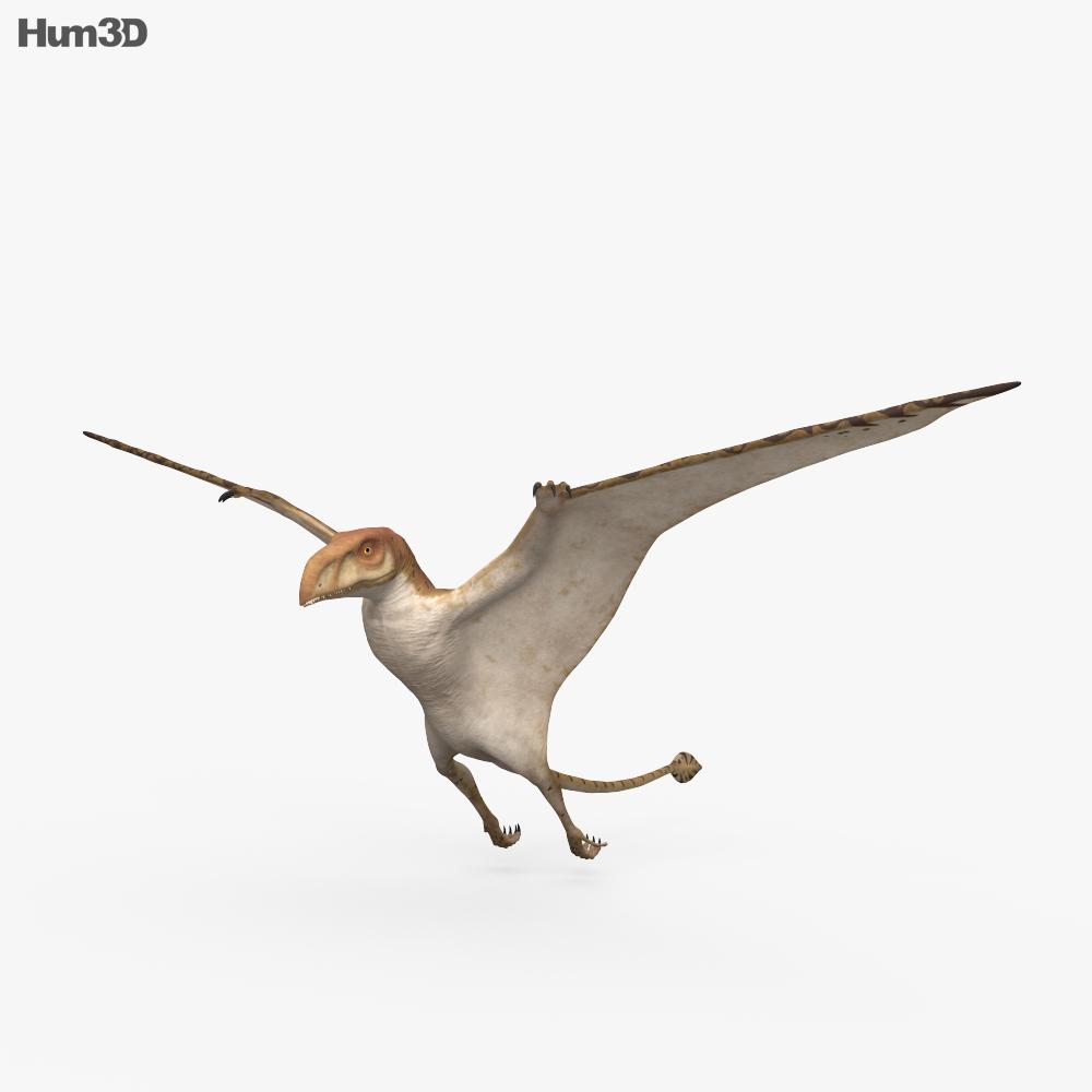 Pteranodon HD 3d model