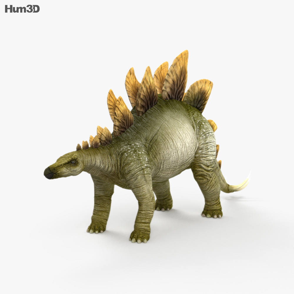 Stegosaurus HD 3d model