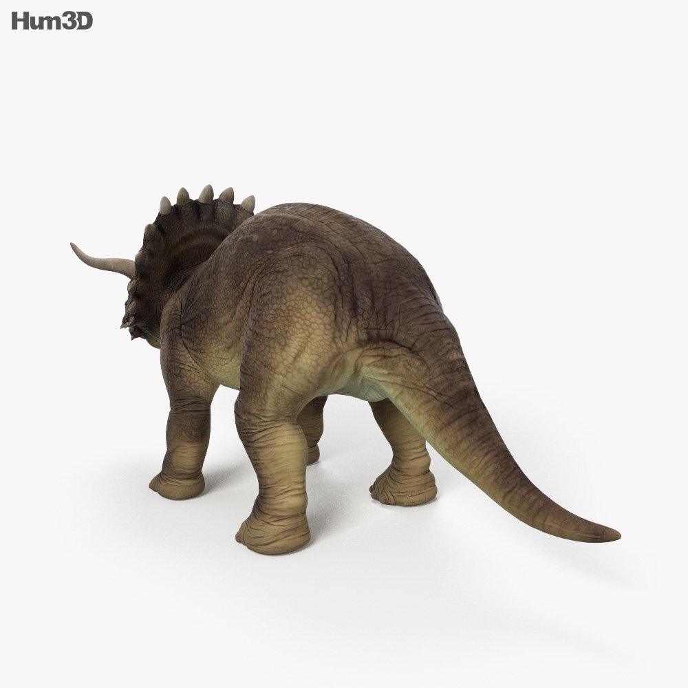 Triceratops HD 3d model