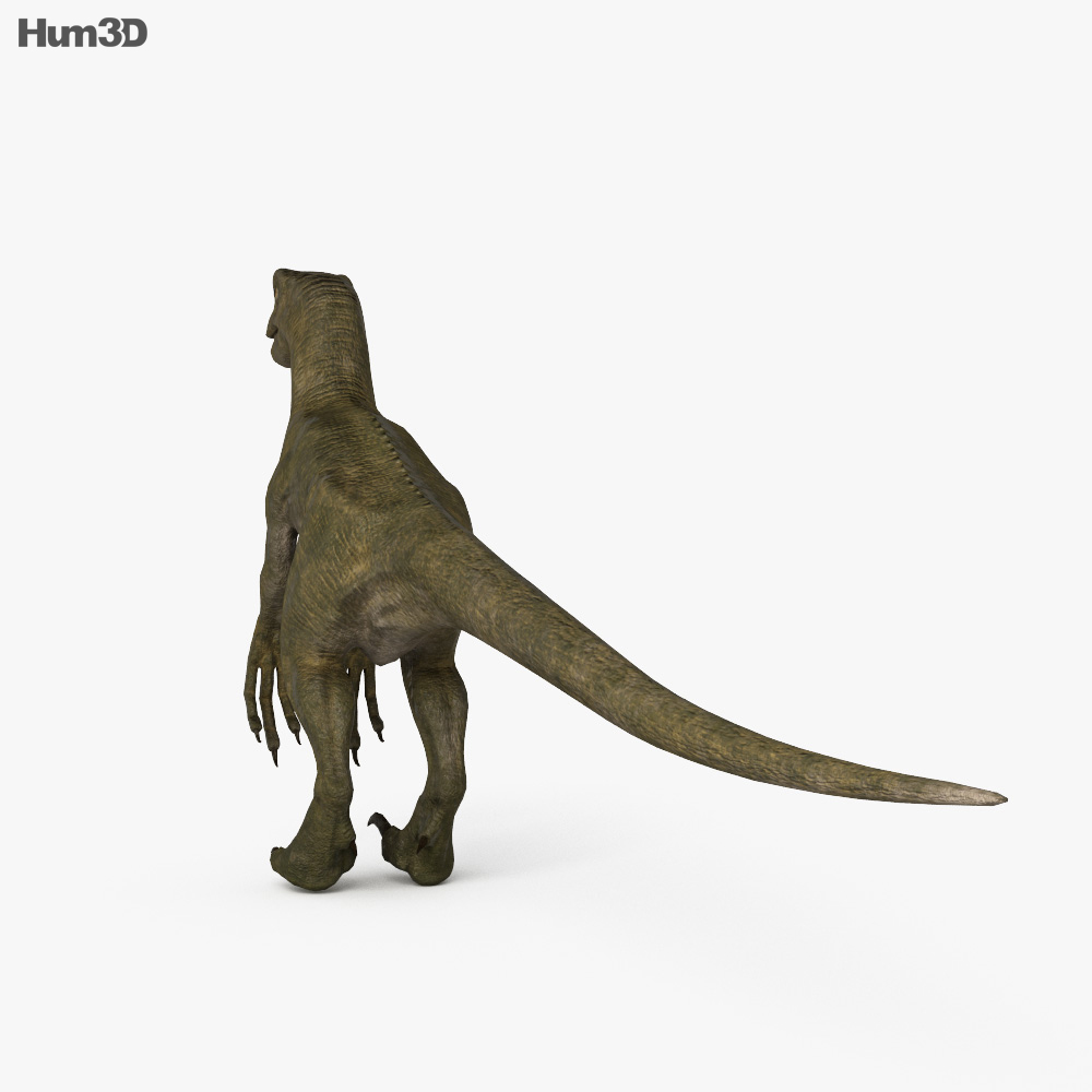 Velociraptor HD 3d model