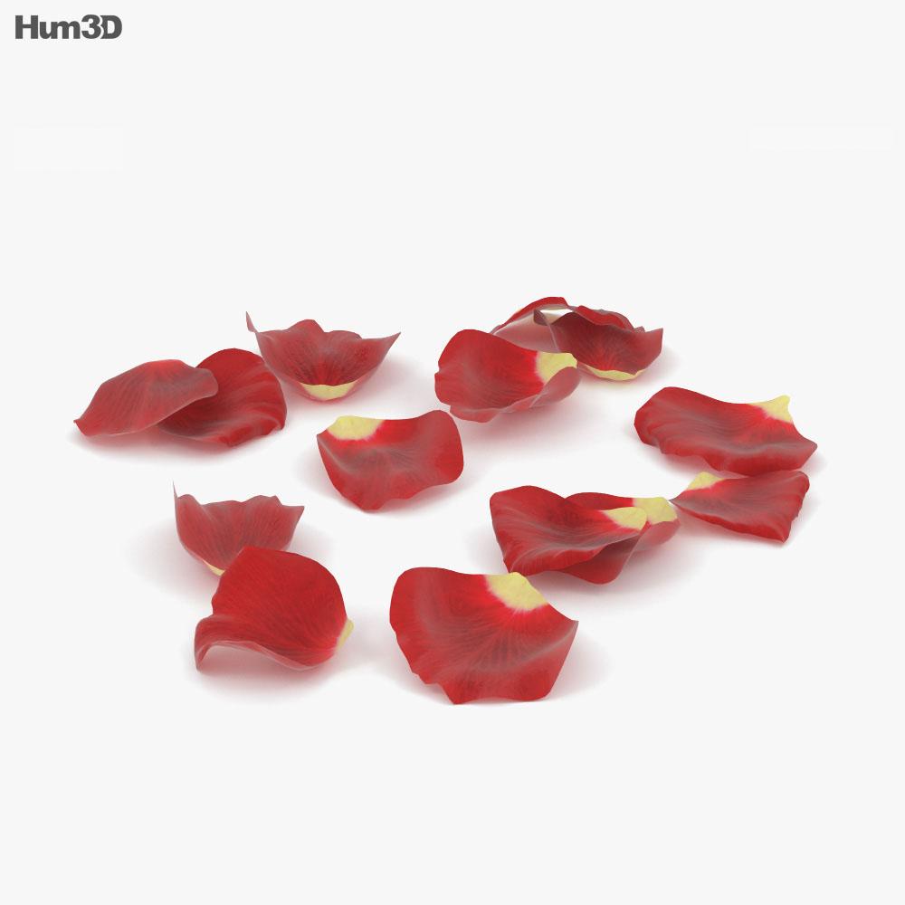 Rose Petals 3d model