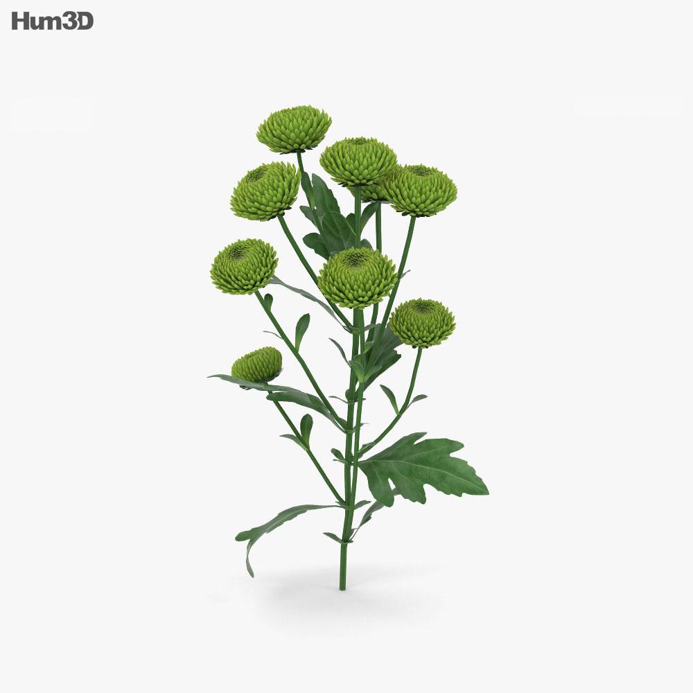Santini Flower 3d model