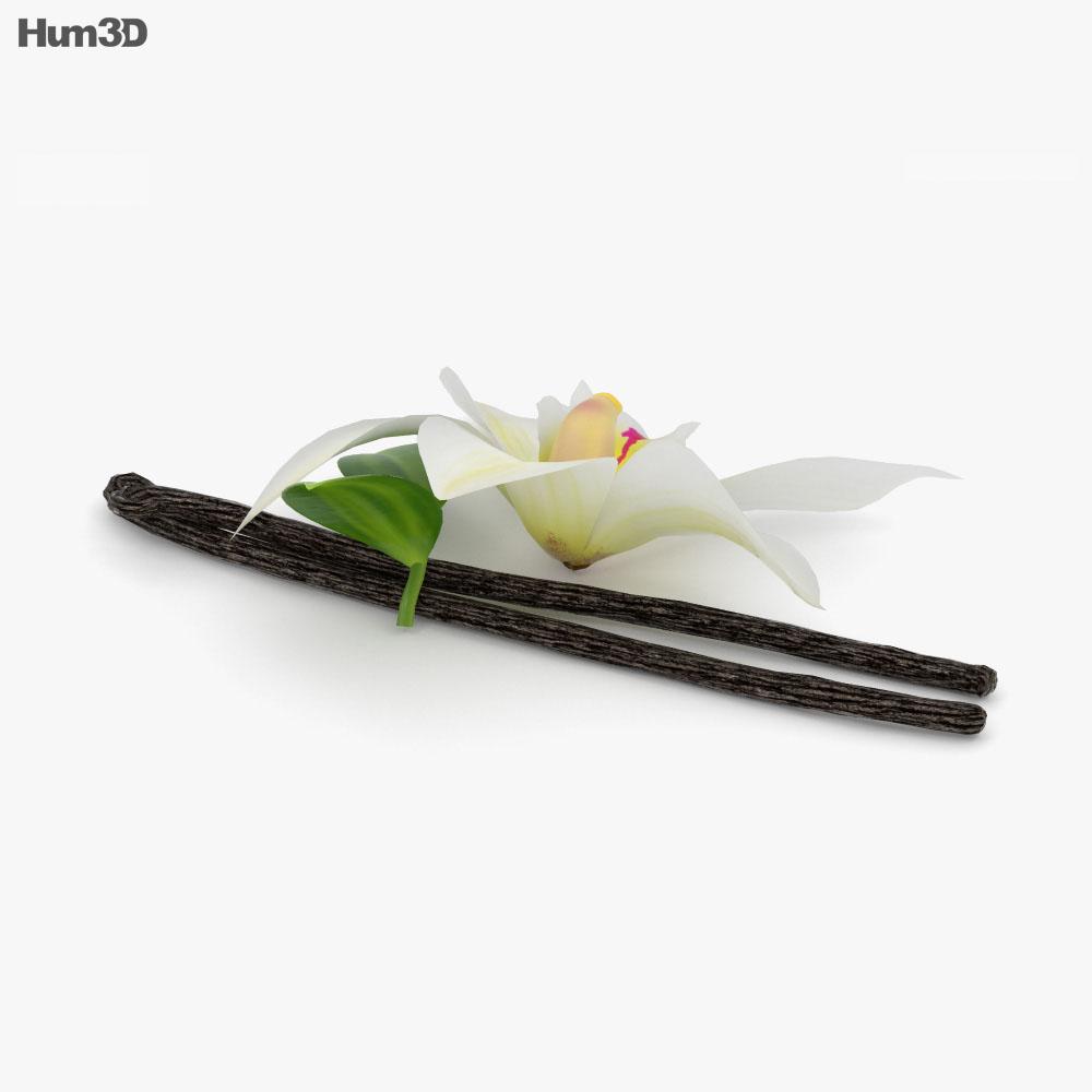 Vanilla Flower 3d model
