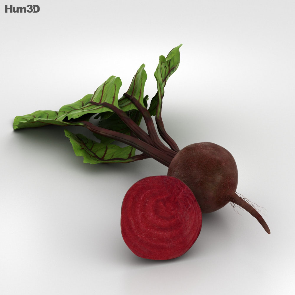 Beetroot 3d model
