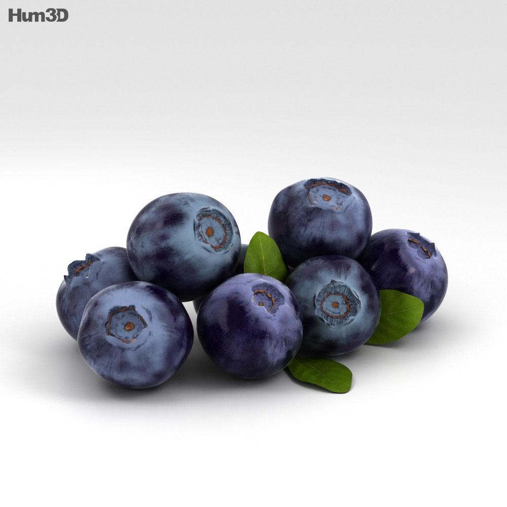 Bilberry 3d model