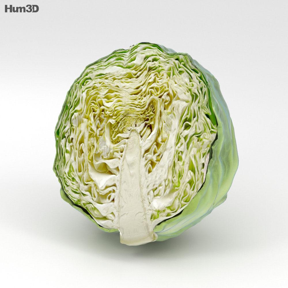 Half a Cabbage 3d model