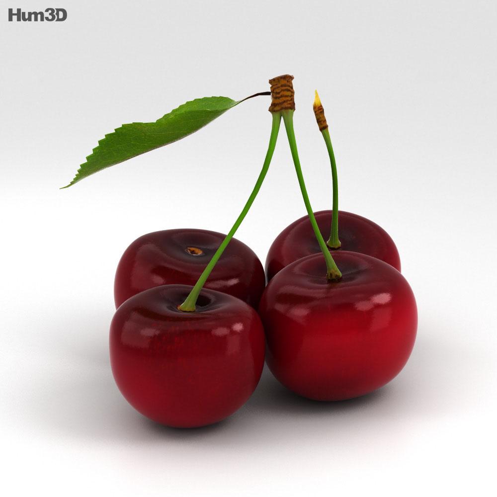 Cherry 3d model