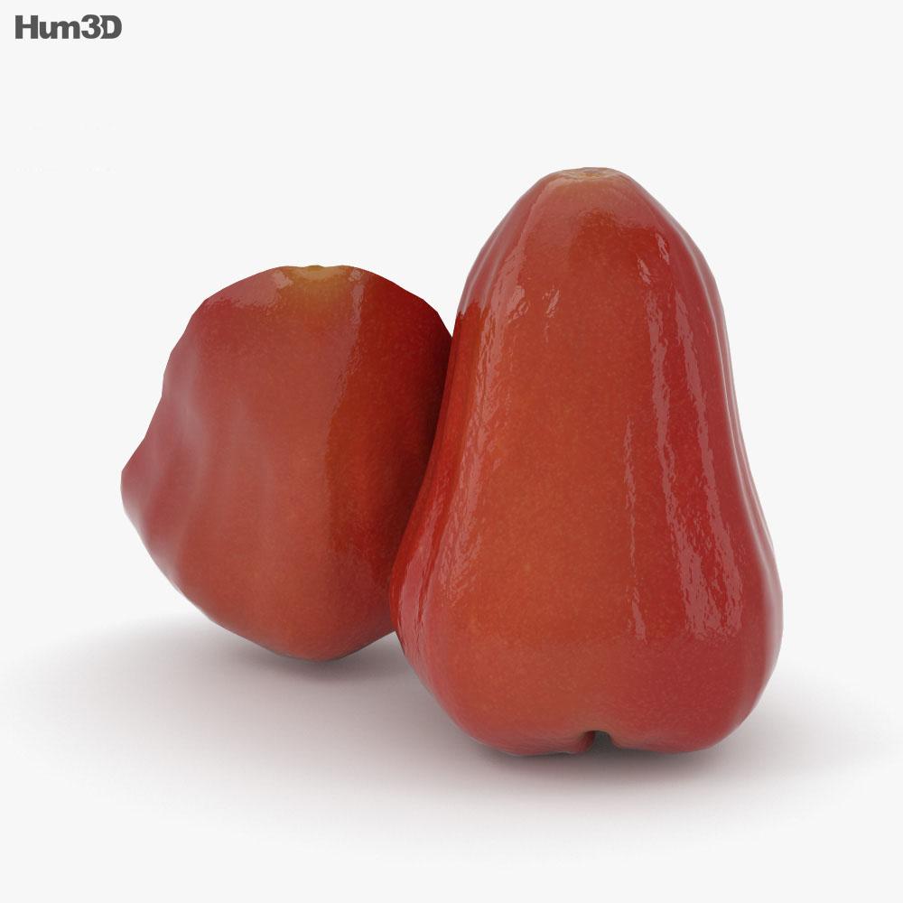 Rose Apple 3d model
