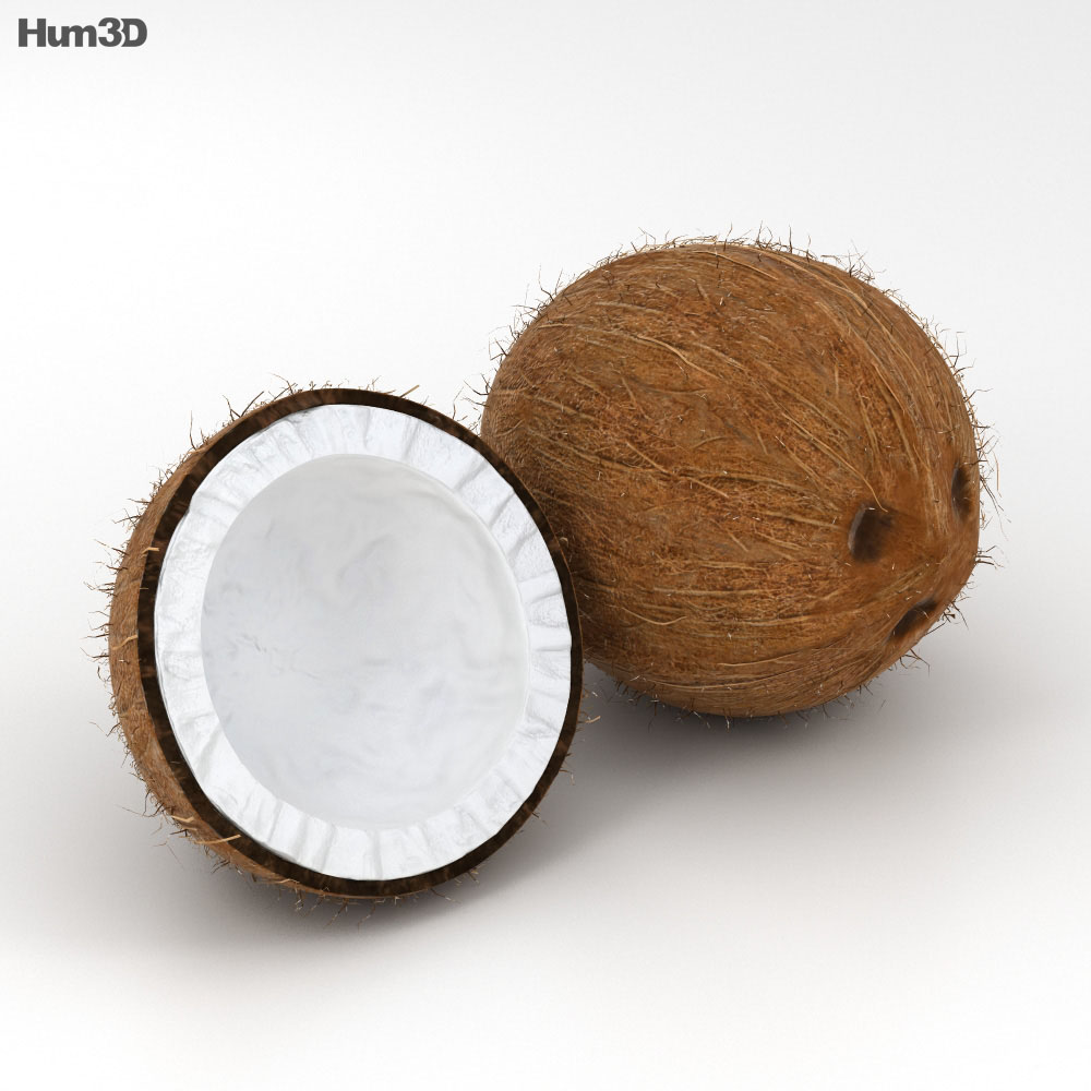 coconut 3d model hum3d train clipart free trains clipart pictures