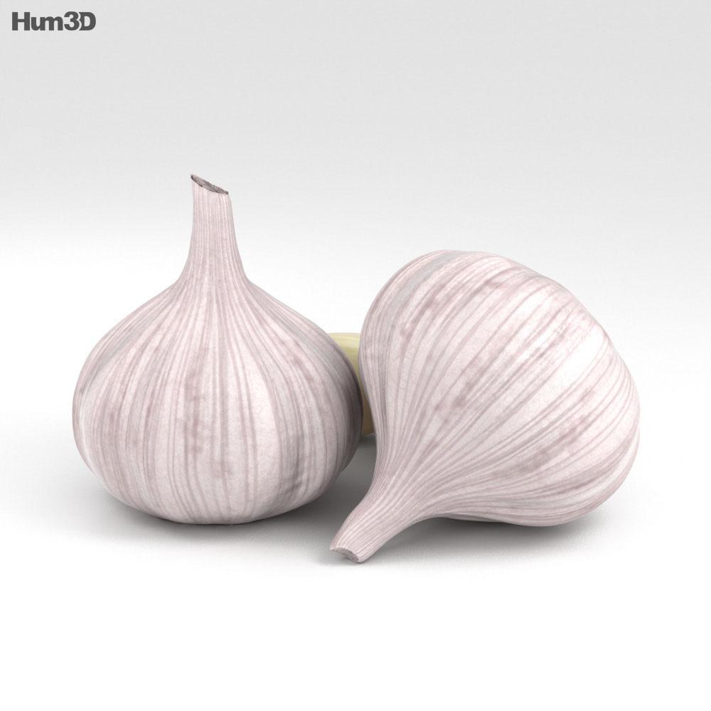 Garlic 3d model