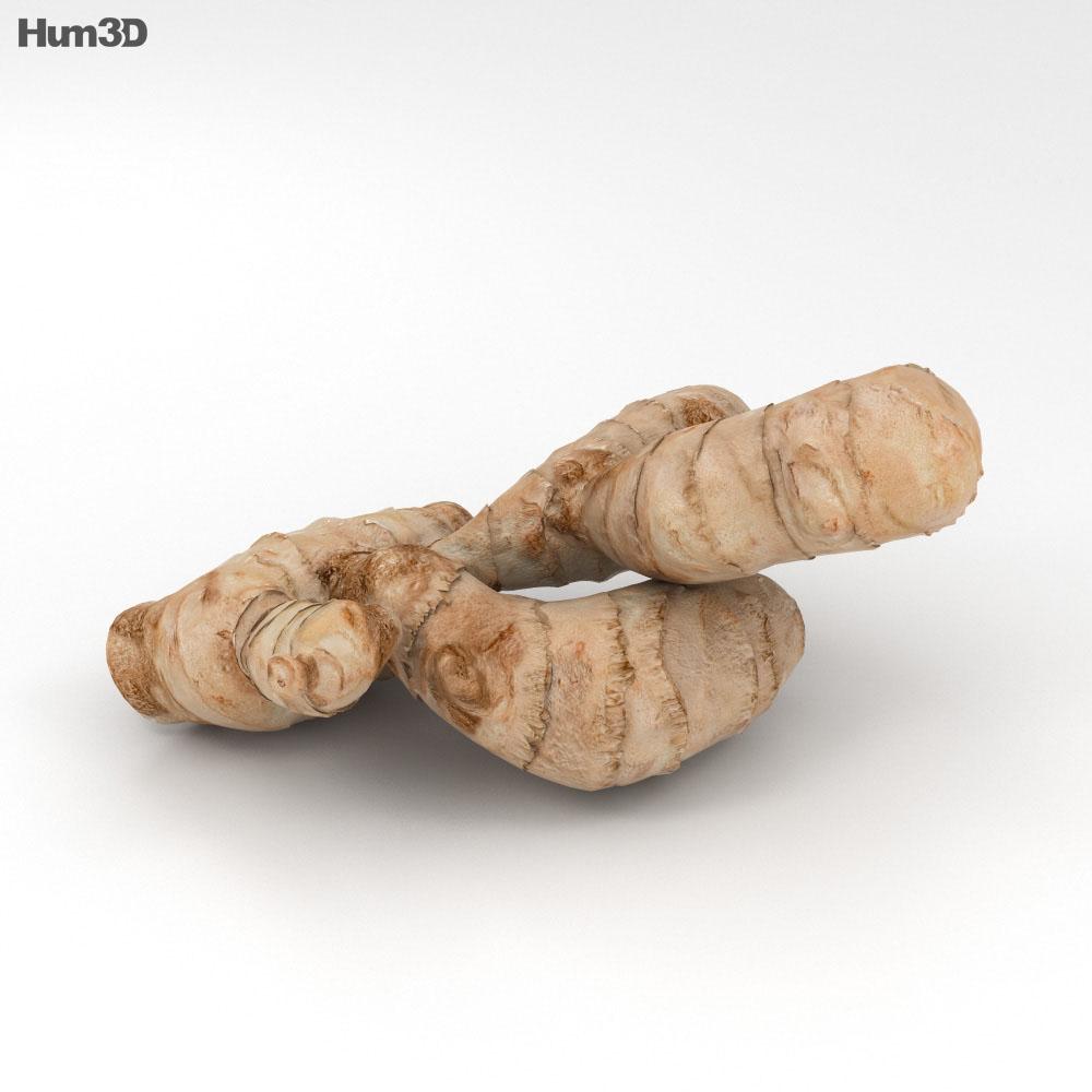 Ginger 3d model