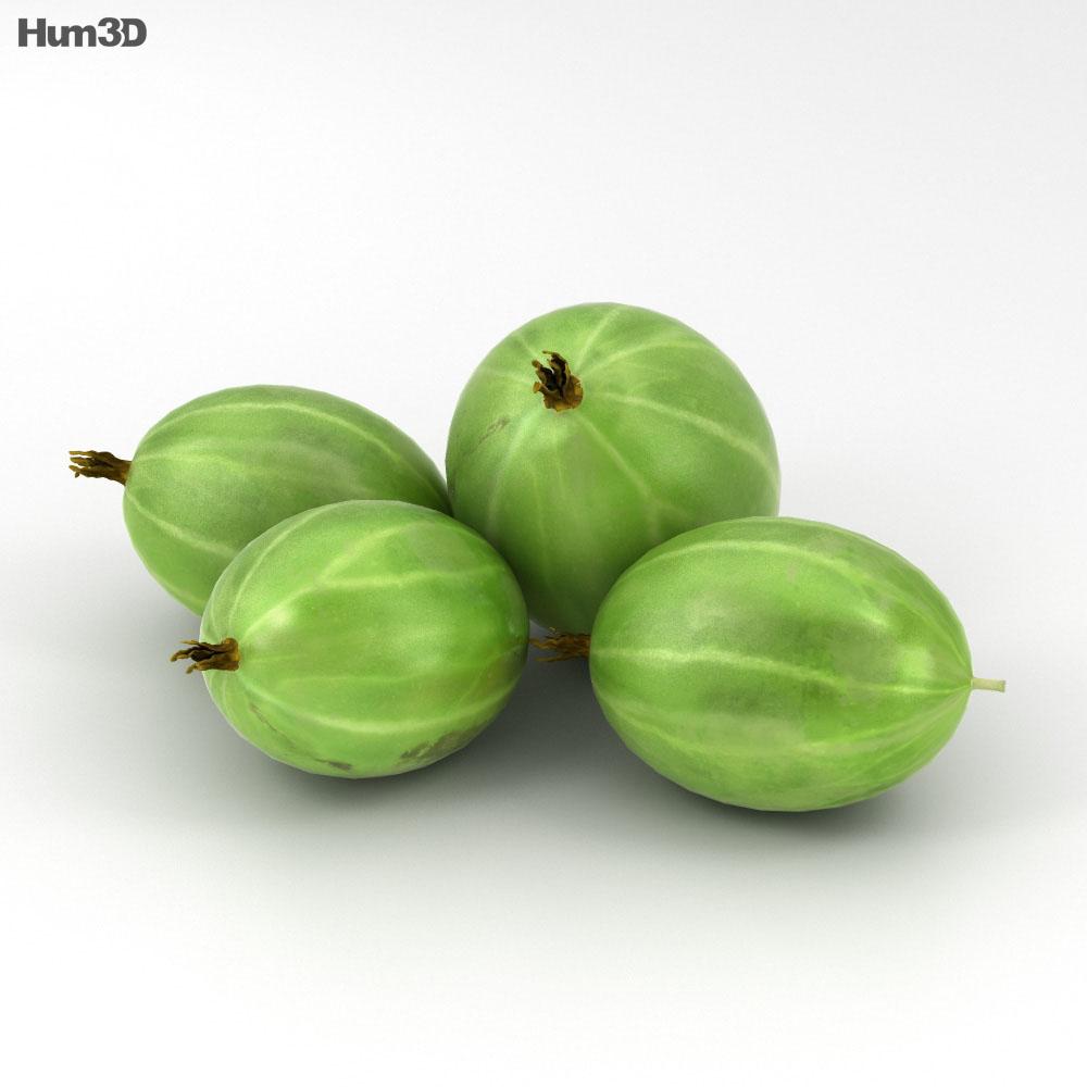 Gooseberry 3d model