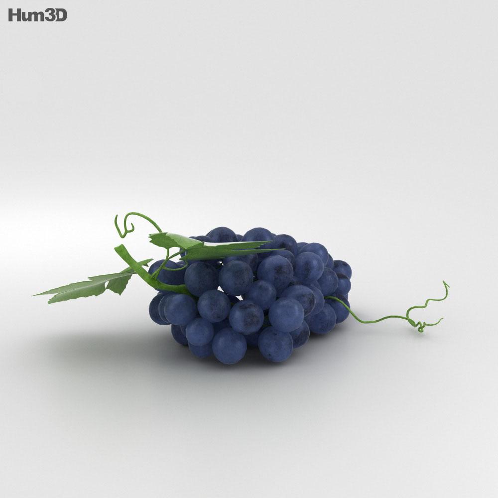 Grapes 3d model