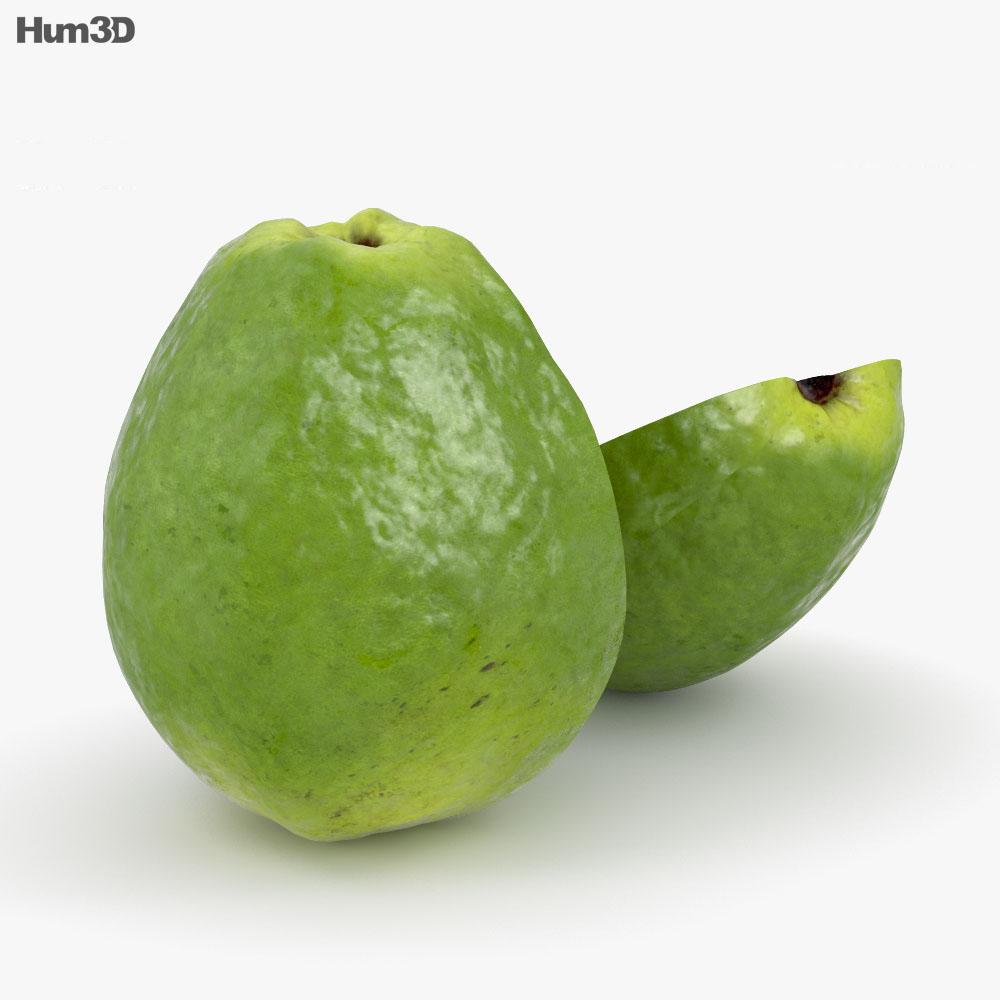 Guava 3d model