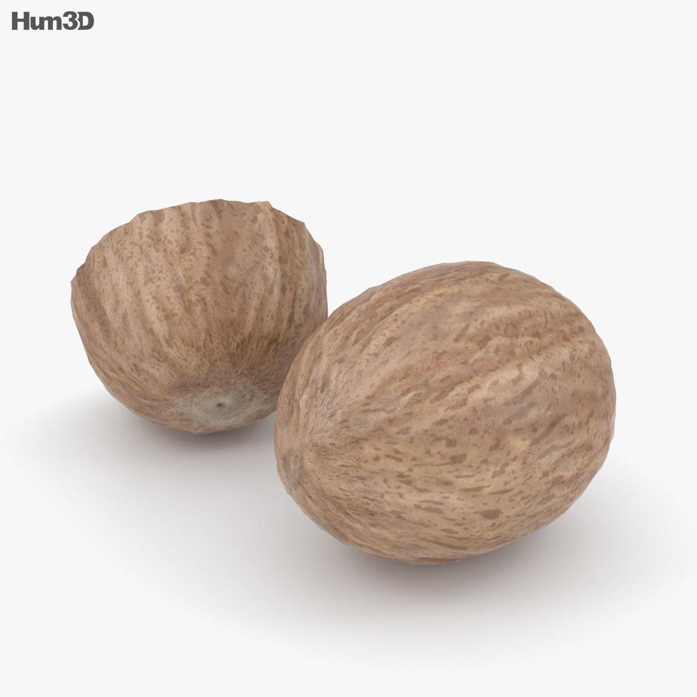 Nutmeg 3d model