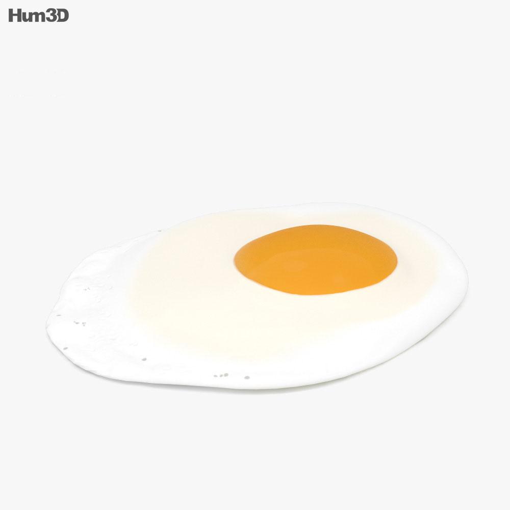 3D model of Fried egg