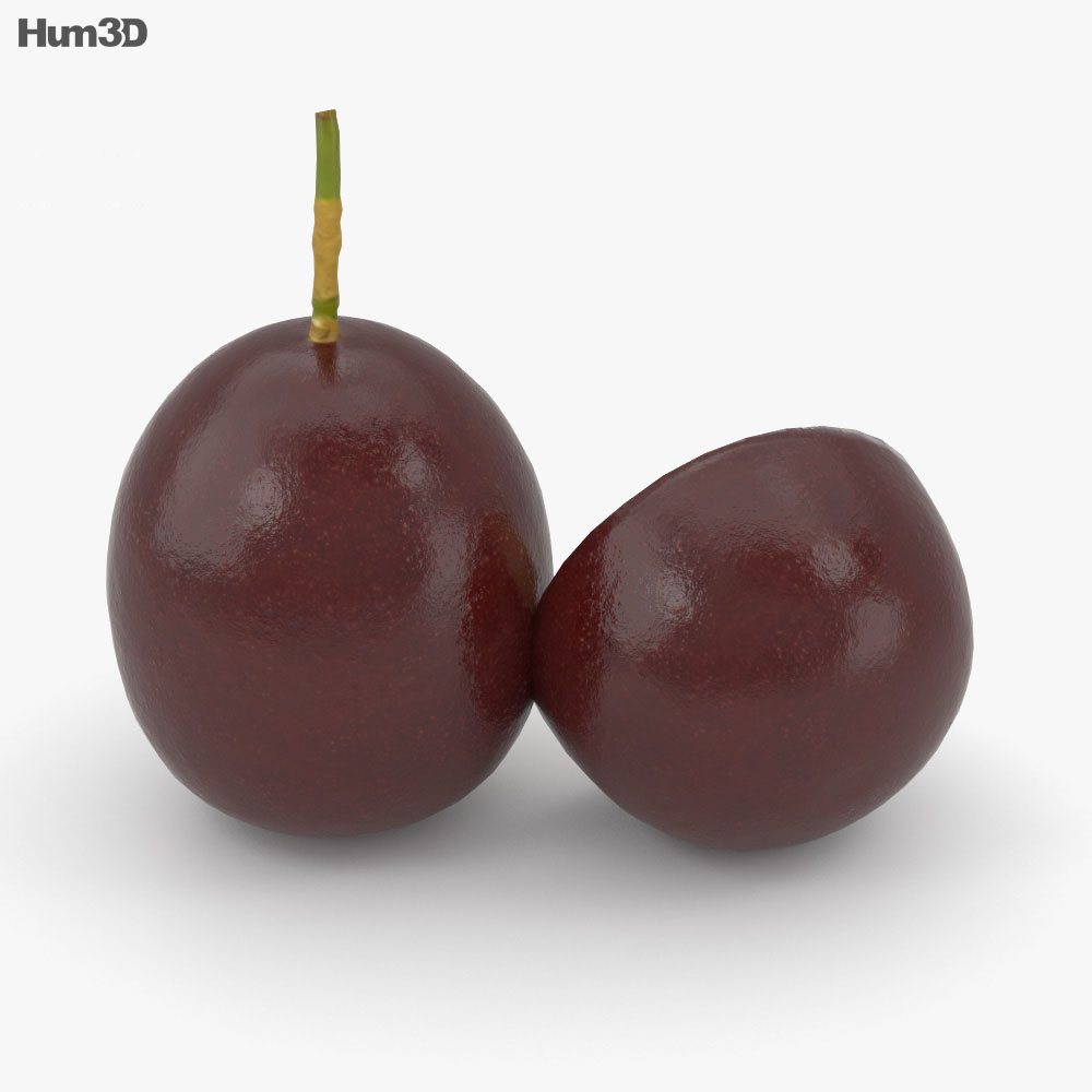 Passion Fruit 3d model
