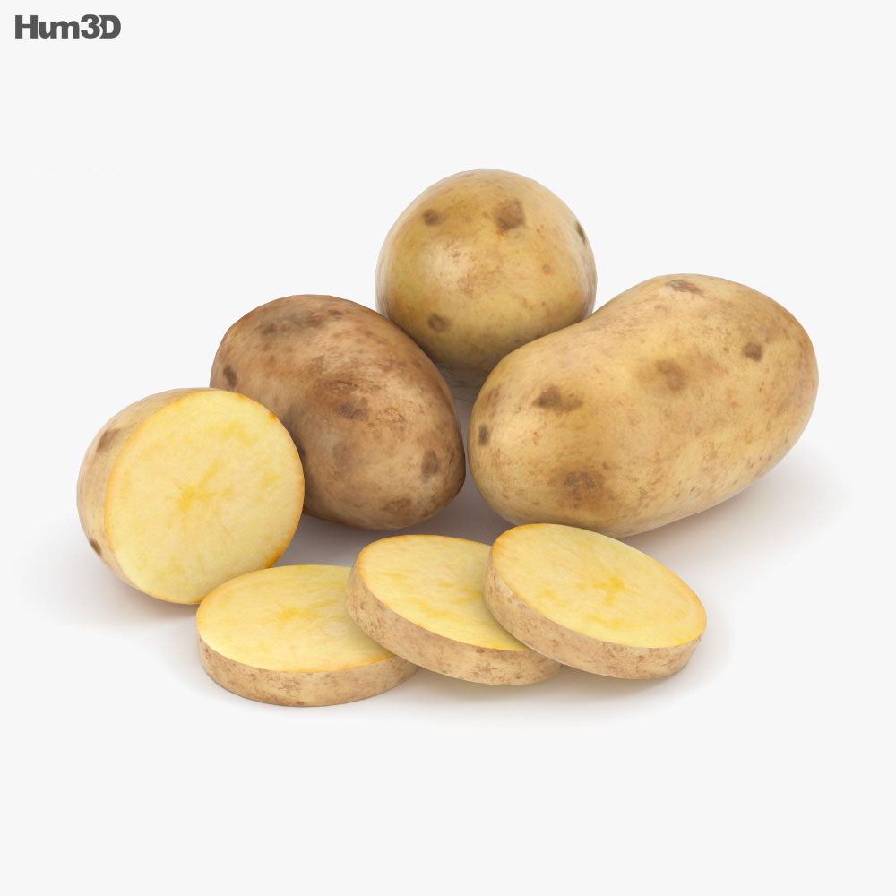 Potato 3d model