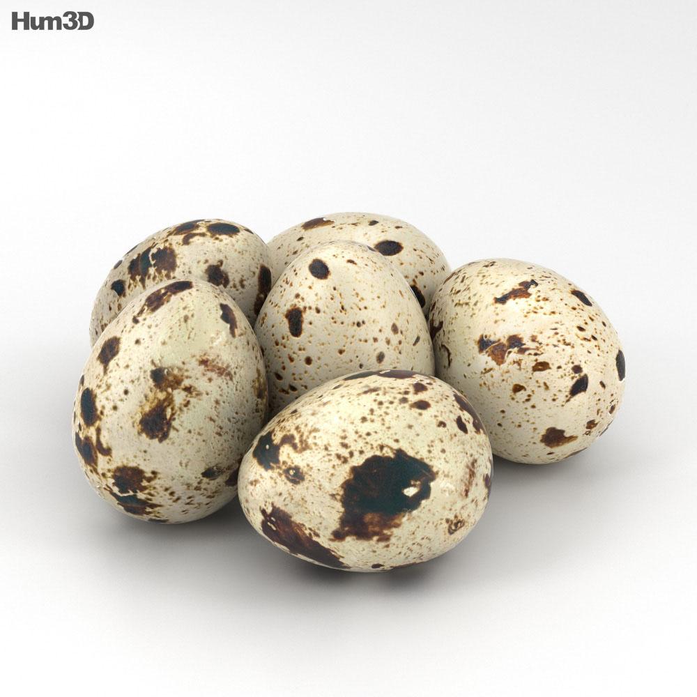 Quail Eggs 3d model