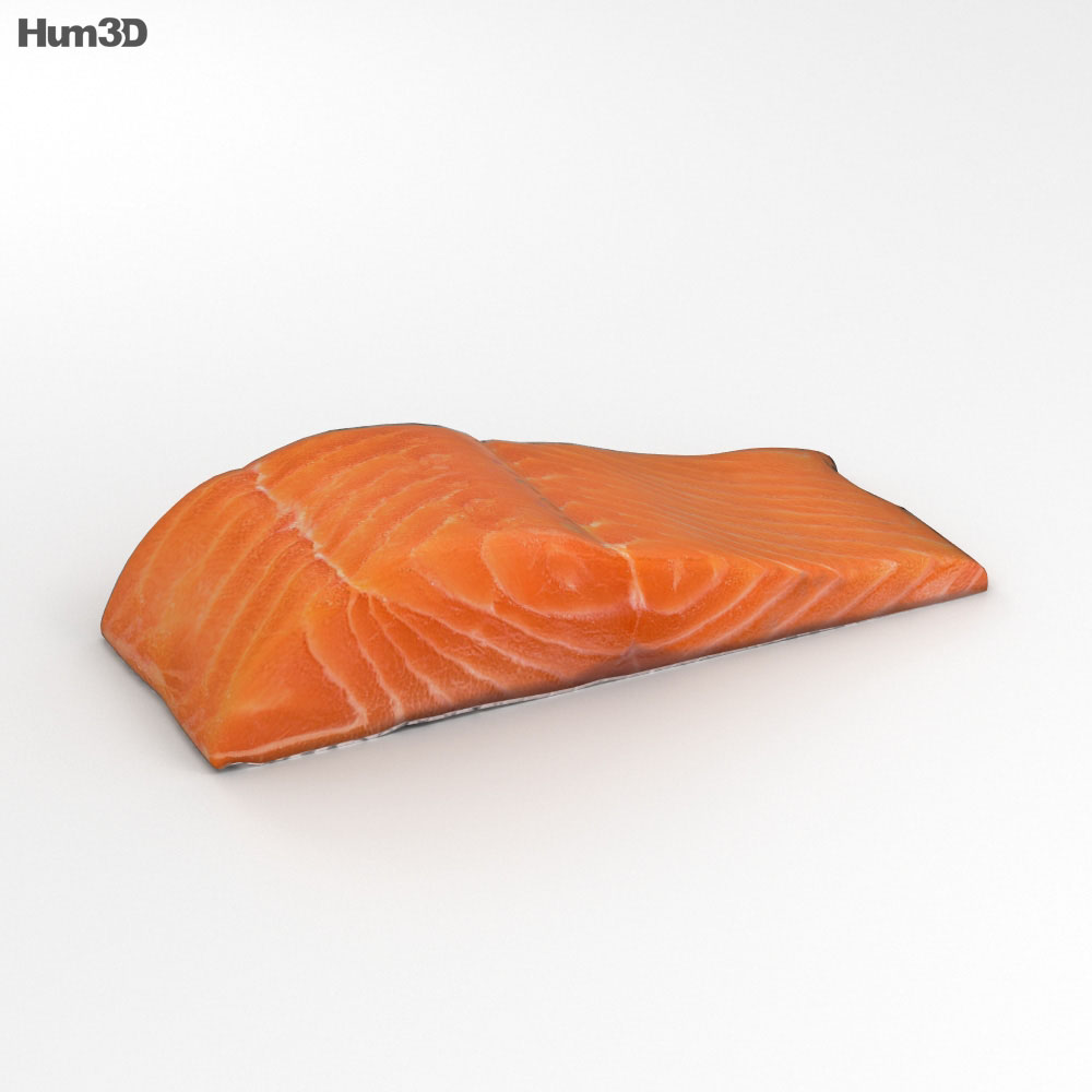 3D model of Salmon Fillet