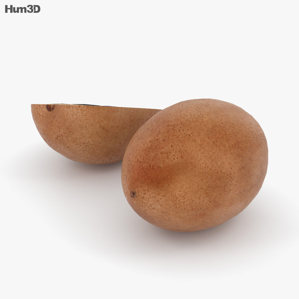 Sapodilla 3d model