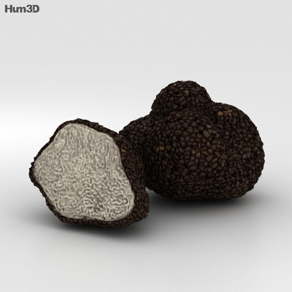 Truffle 3d model