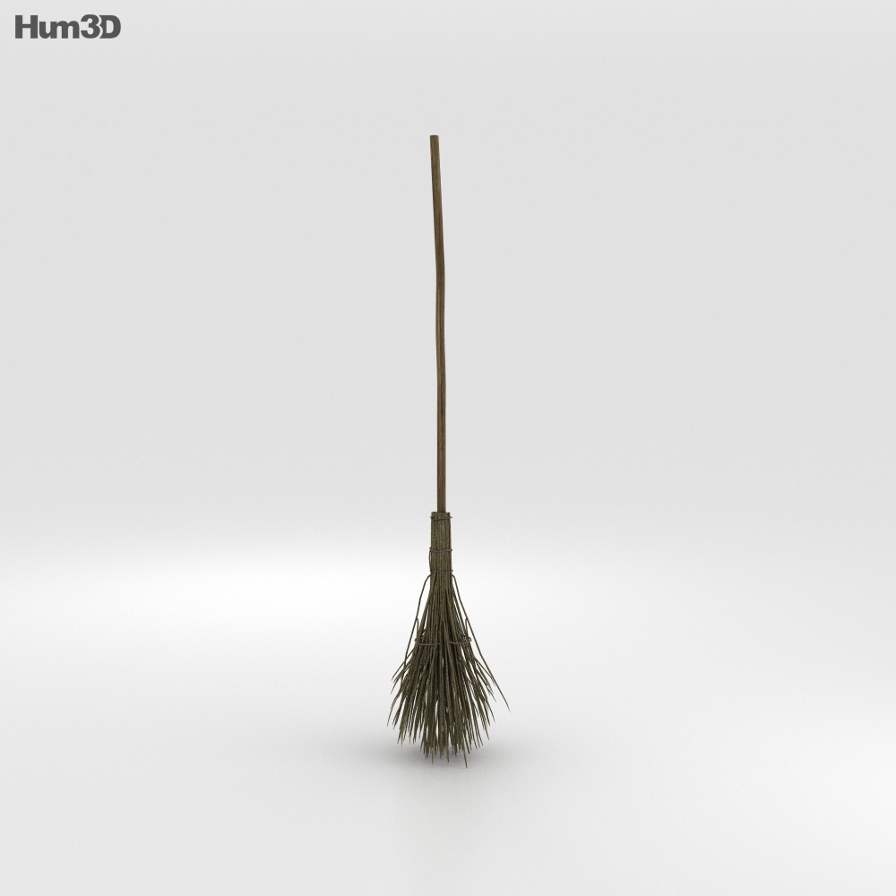 Witch's Broom 3d model